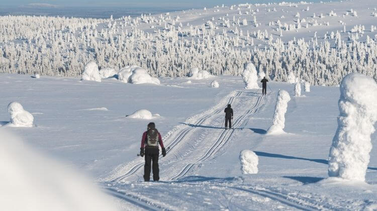 Parhaat talviurheiluvinkit tulevaan talveen